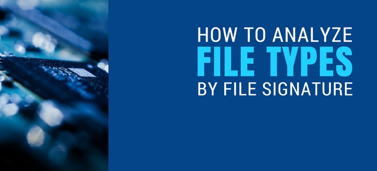 How To Analyze File Types By File Signature